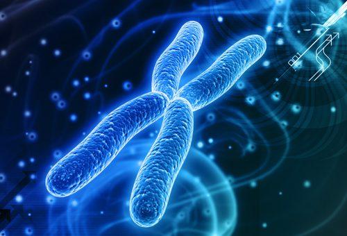 Biologia | Le mutazioni